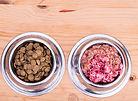 how to feed raw dog food