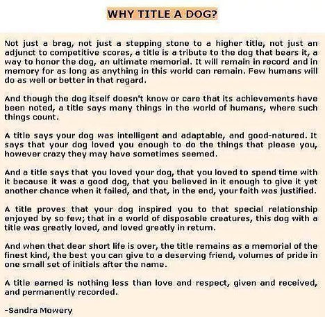 Why title a dog