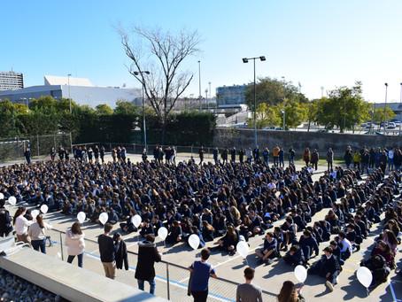 DENIP. Dia Escolar de la No-violència i la Pau