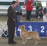 GRCA National 2011 Eddie free stack 2.JP