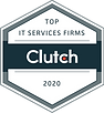 IT_Services_Firms_2020_simplesolutiontec