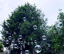 bubbles.jpeg