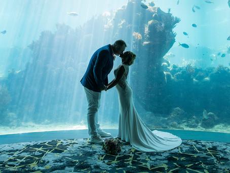 Craig and Erifina's Intimate Wedding at Daydream Island