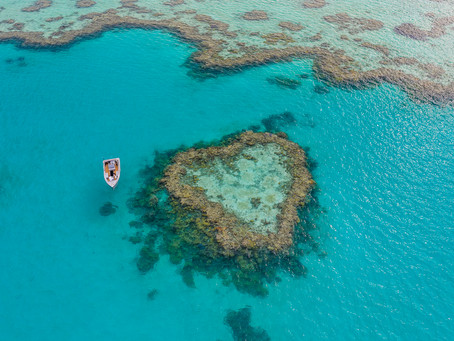 Proposal At Heart Reef