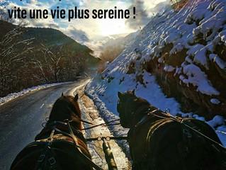 Les voeux du président du Sherpa Rhône Alpes