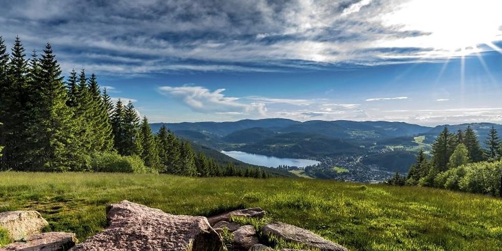 Schwarzwald Weekend