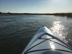 fossil kayak tour in Charleston