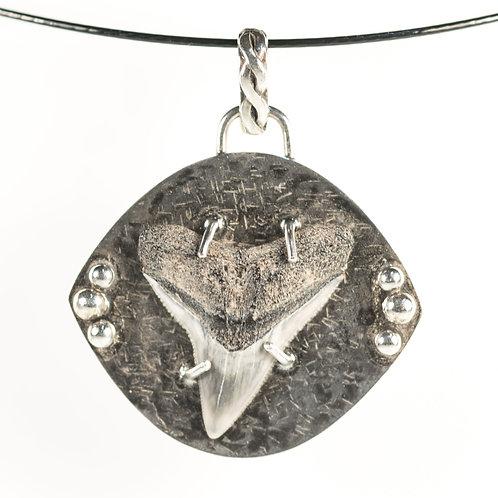 Fossil Bull Shark Tooth Pendant