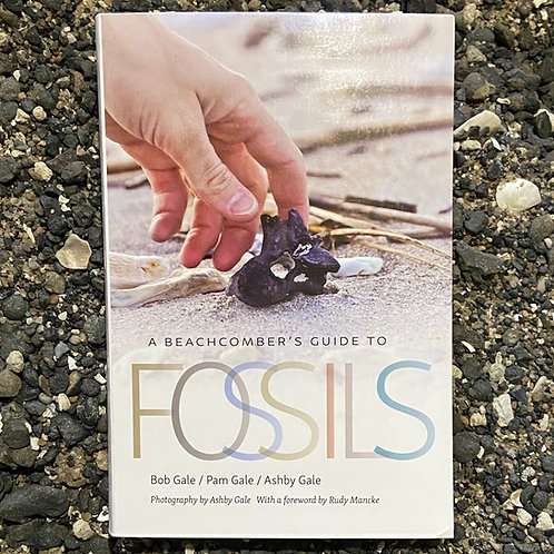 A Beachcomber's Guide to Fossils (Wormsloe Foundation Nature Book Ser.)