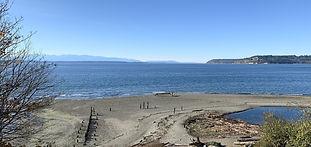 Picnic Point Beach.jpg