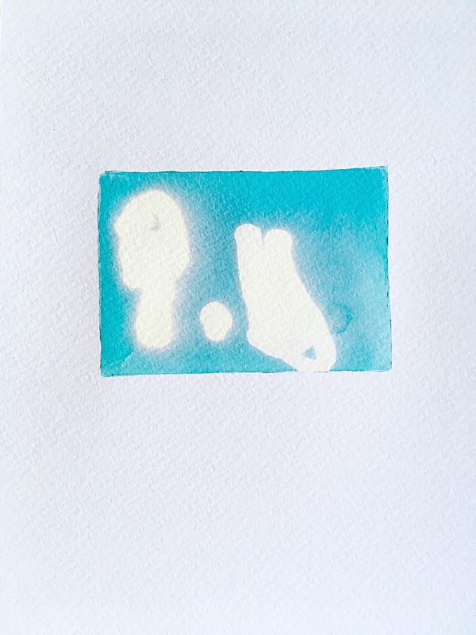 Const(elle)ation PF - numéro 28/7