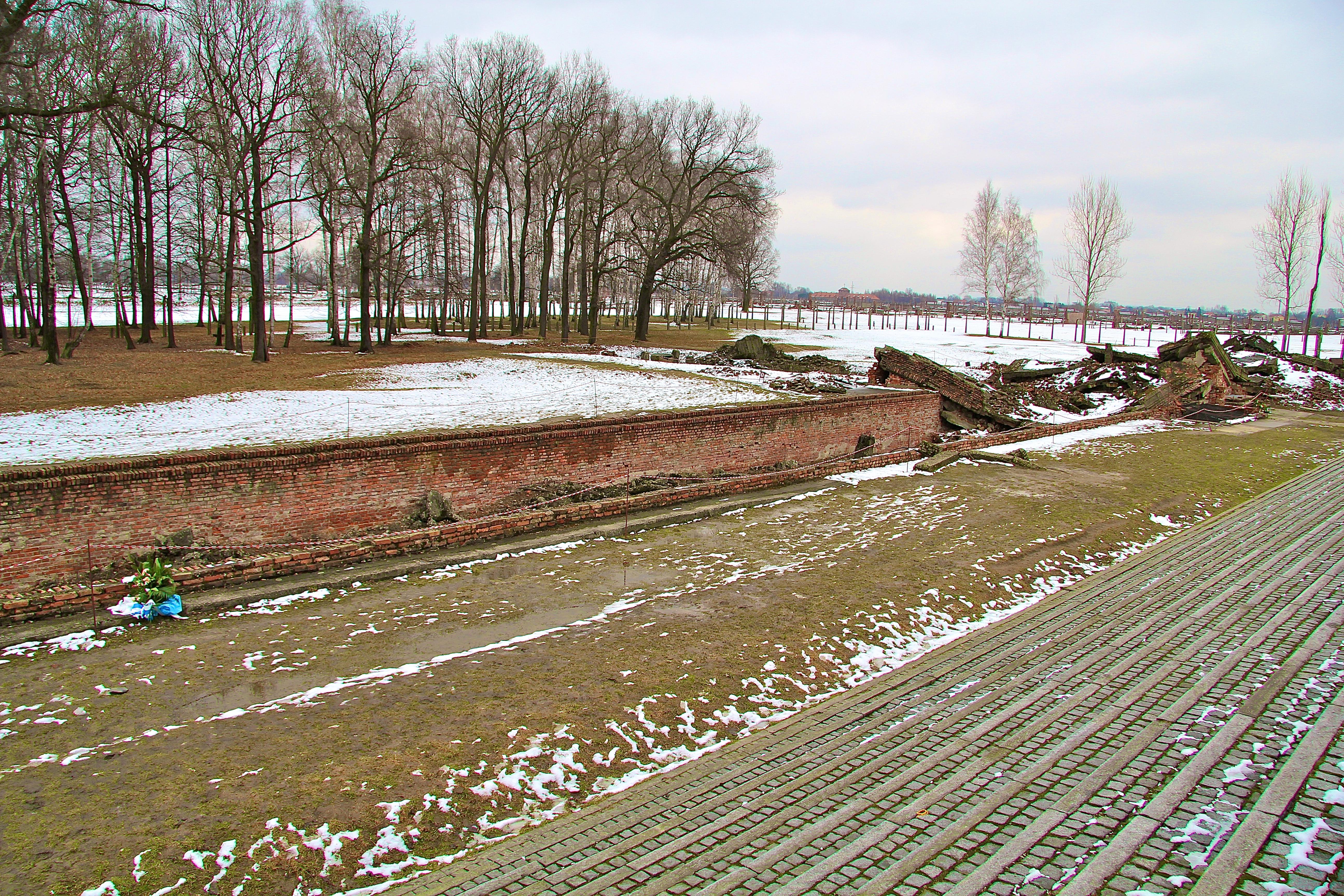Birkenau, les chambres à gaz