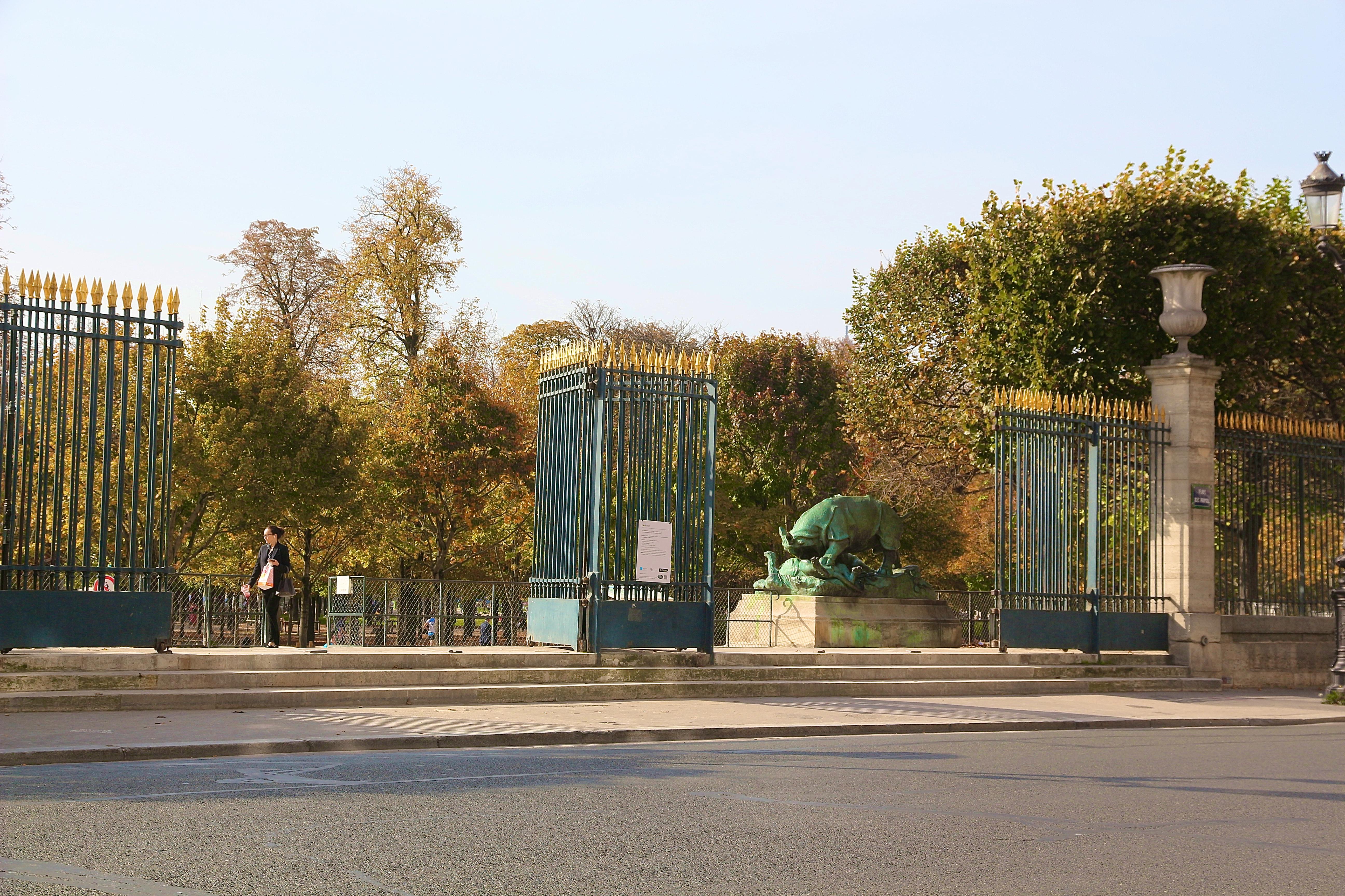📸 le Jardin des Tuileries