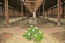Birkenau, les latrines