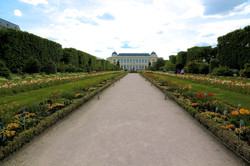 📸 le Jardin des Plantes