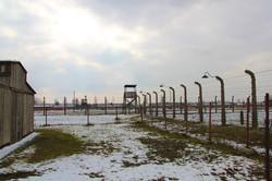 Nous quittons l'enfer de Birkenau