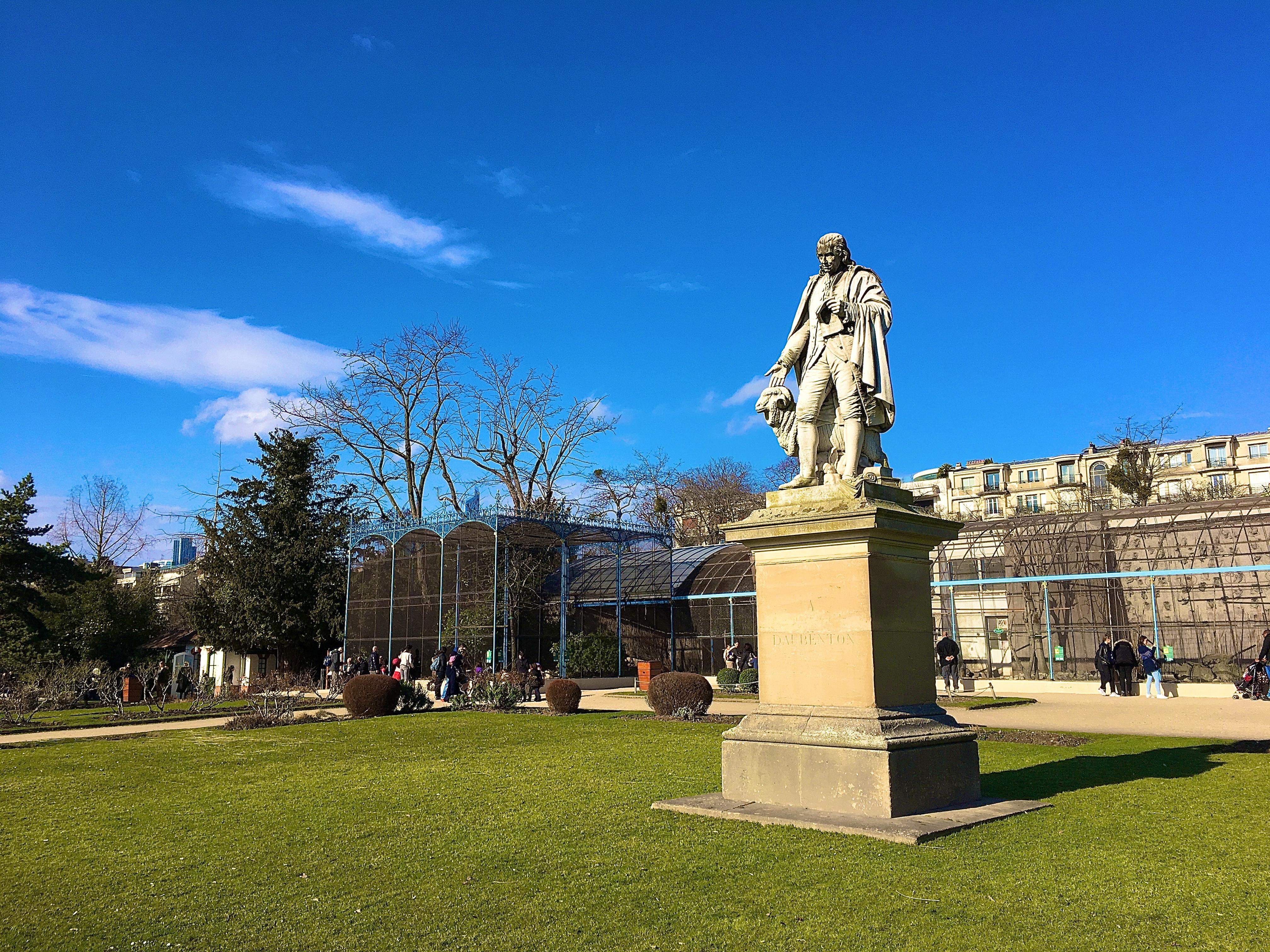 la statue de Daubenton