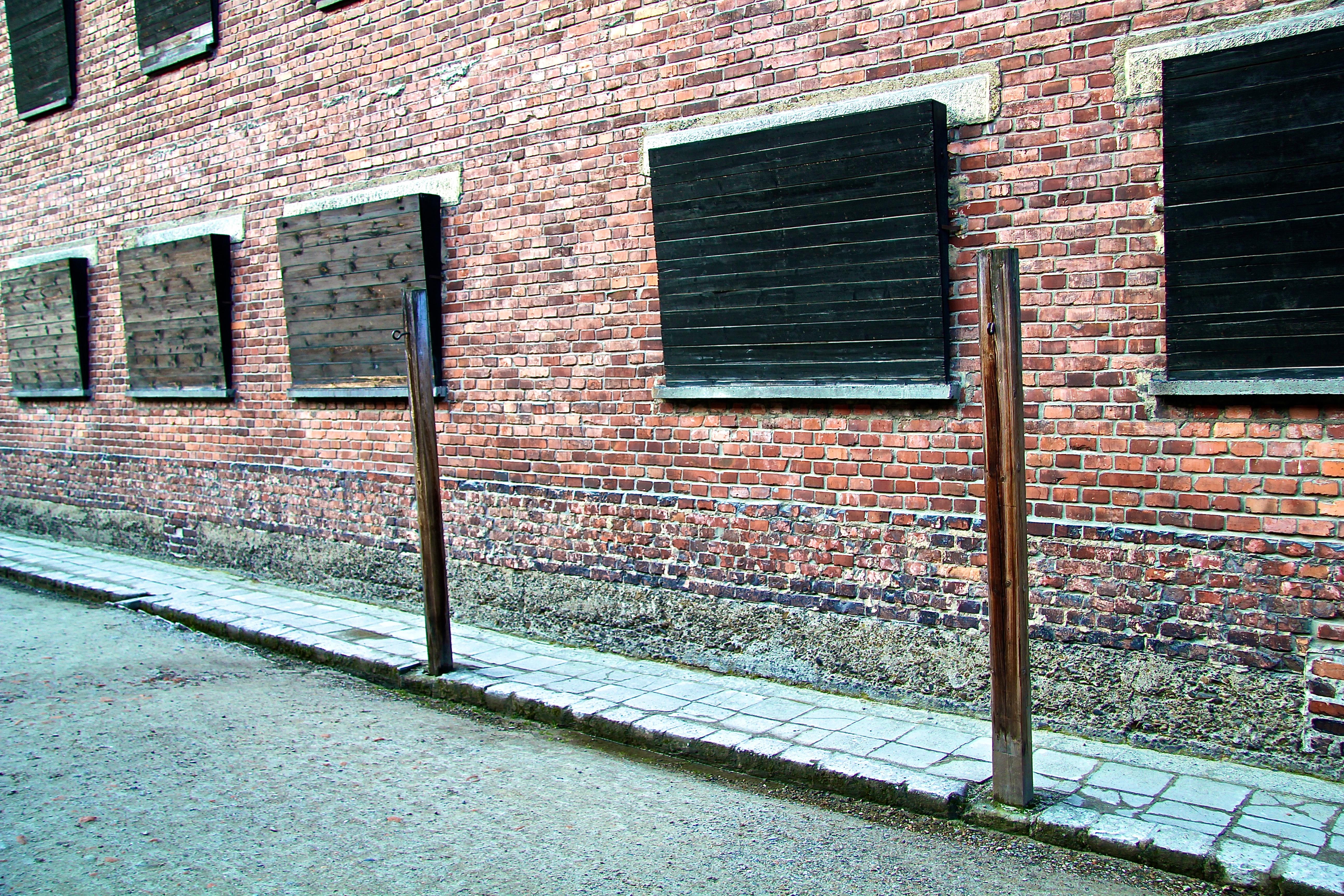 Auschwitz, le bloc 11