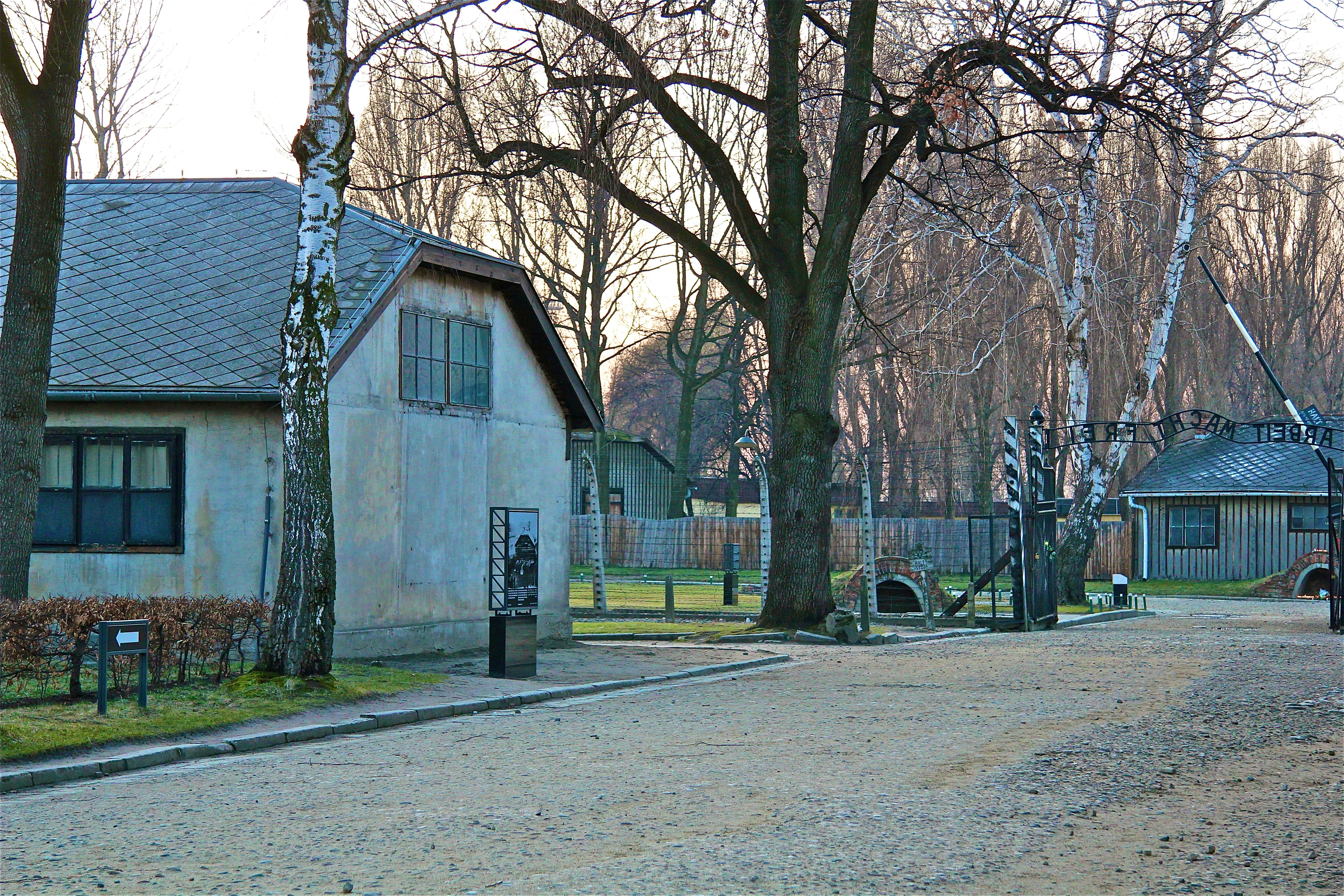 Auschwitz, la place de l'orchestre