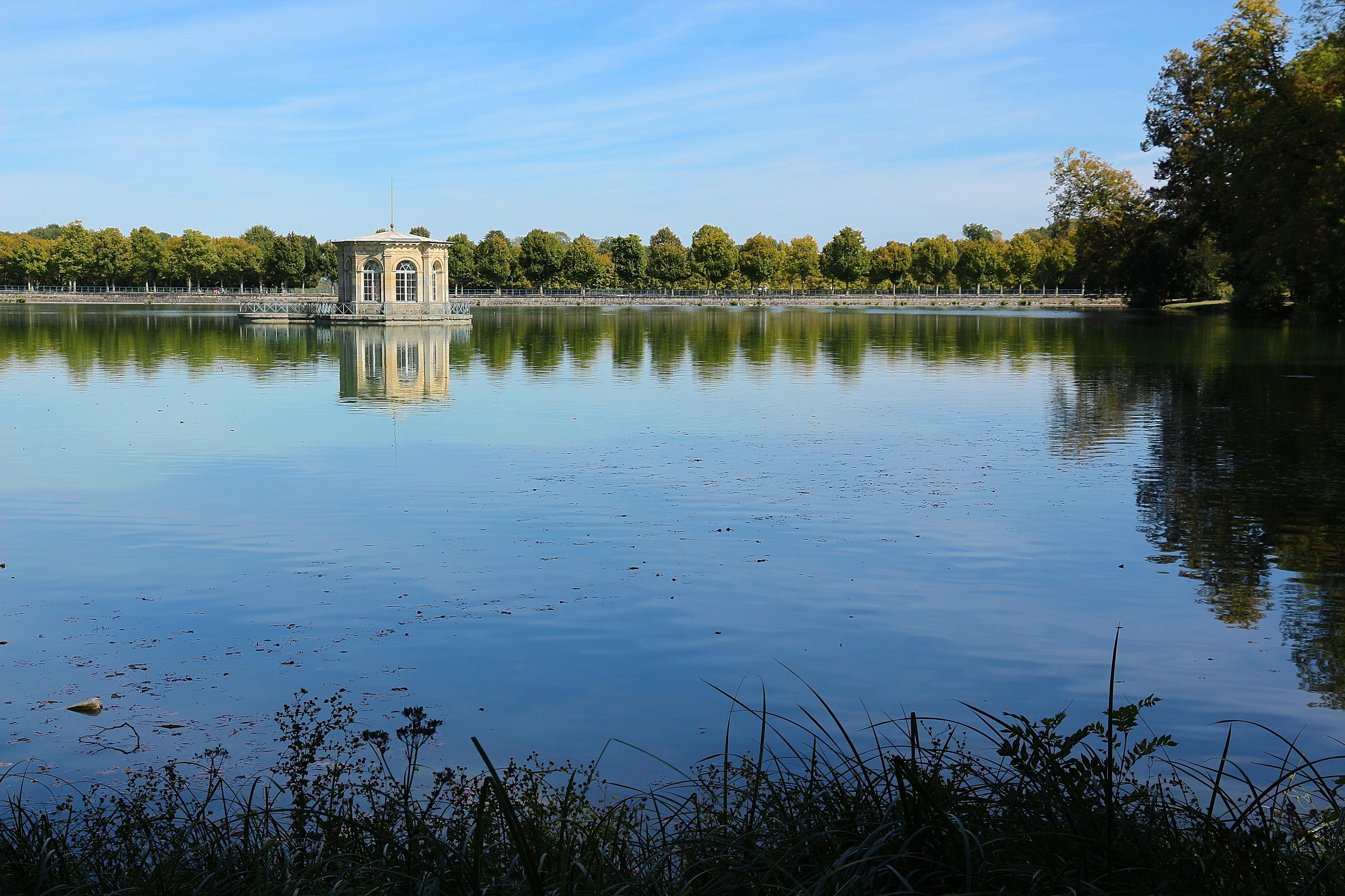 l'étang aux Carpes