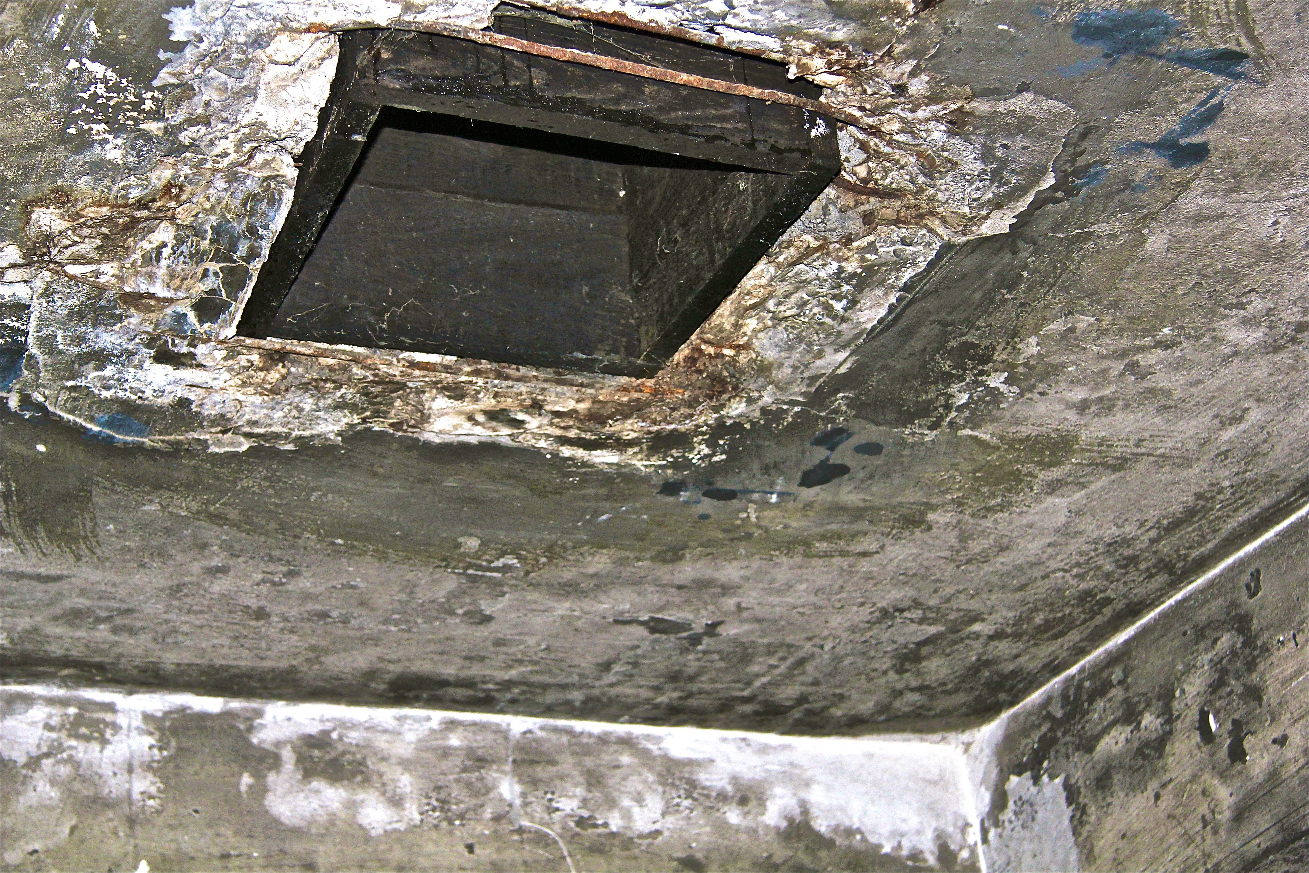 Auschwitz, les chambres à gaz