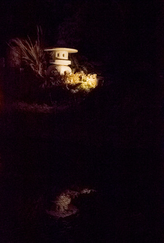 Illumination and reflection