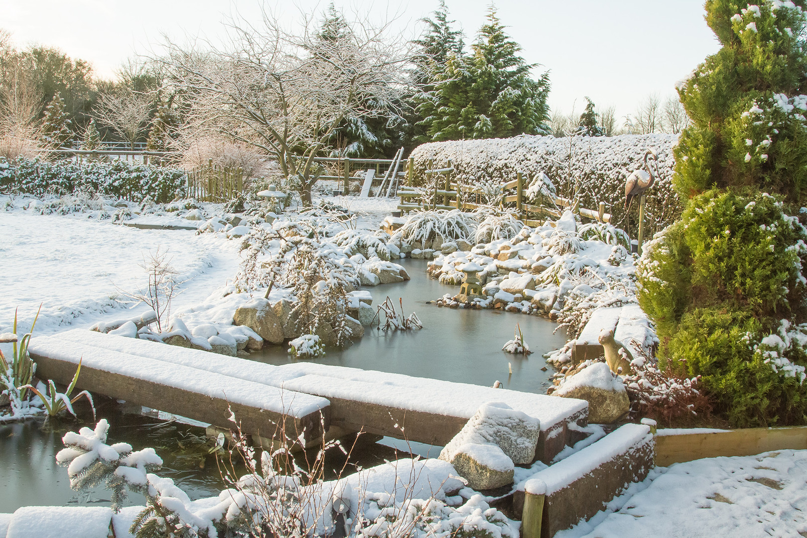Snow on the new pond