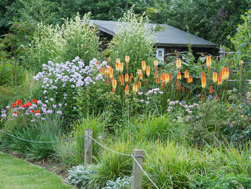 July and the NGS