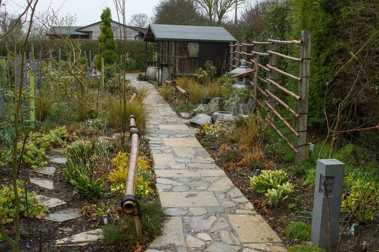 Tea garden in spring