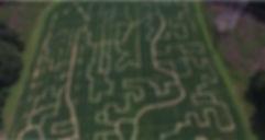 Maze Drone Second Half.JPG
