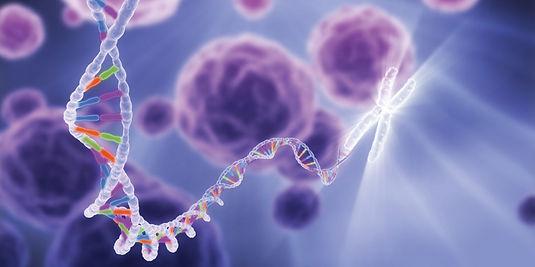 Constelação familiar, biorressonância, terapia quântica, hipnose clínica, homeopatia e nova medicina germânica na saúde emocional