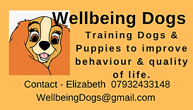Wellbeing Dogs Business Card .png