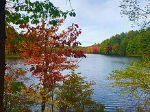 New Hampshire17-10-2019 at 11.24.56 34.j