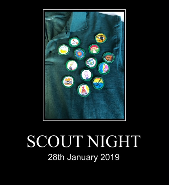 Scout Badge Night
