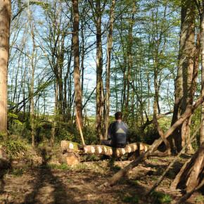 Seul au fond des bois