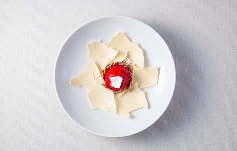 Raspberry Sorbet White Chocolate Coque