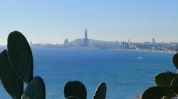Skyline of Barcelona. View from the park