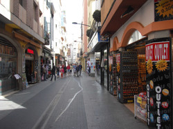 shopping street (parallel street of the apartment)