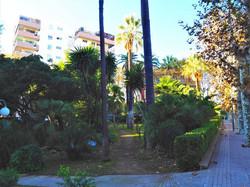 garden of our residence
