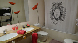 """bathroom I"": bath-tube/Shower, bidet, hair dryer."