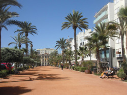 Beach Promenade (only a 3-minutes walk from the apartment)