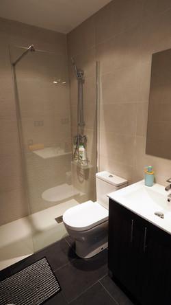 Bathroom, shower, hair dryer