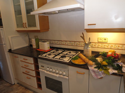 fridge, oven, toaster, microwave, kettle, coffee machine, etc.