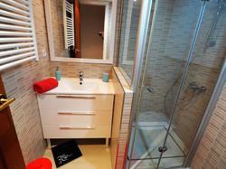 Bathroom II: shower, hair dryer