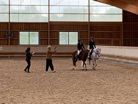 🕶🕶🕶 Nos poneys sont des acteurs 🕶🕶🕶