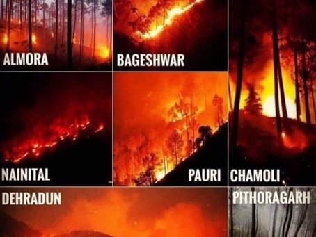 हिट वेव के चलते उत्तराखंड में भड़की भीषण आग।  जानिए पूरा मामला। UTTARAKHAND FOREST FIRE LATEST UPDATE