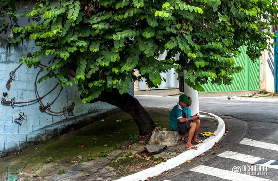 Jardim Monte Azul