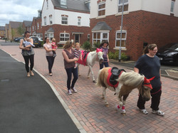 pony street cred!