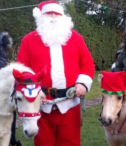 Ponies with Santa
