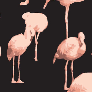 Flamingoes / Patterns from Agency